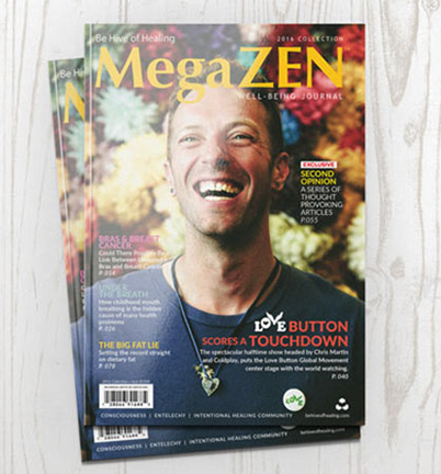 MegaZEN Publication